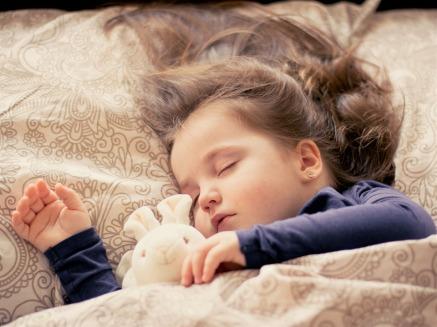 dorme