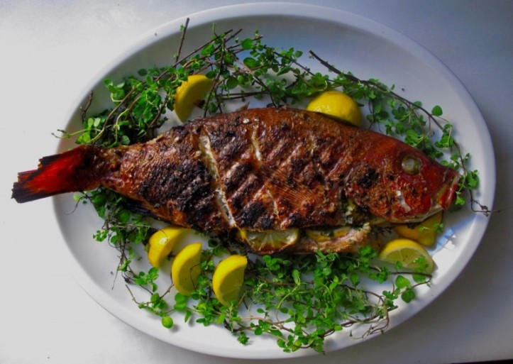 peixe2